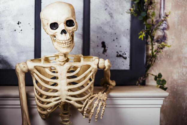 skelet pynt